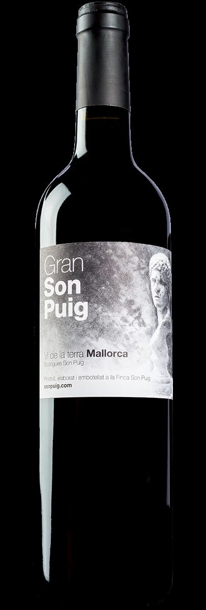 Gran Son Puig 2011