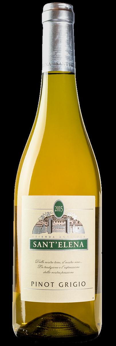 Pinot Grigio Friuli DOC 2015